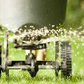 Как производится посев газонной травы осенью, в зиму?