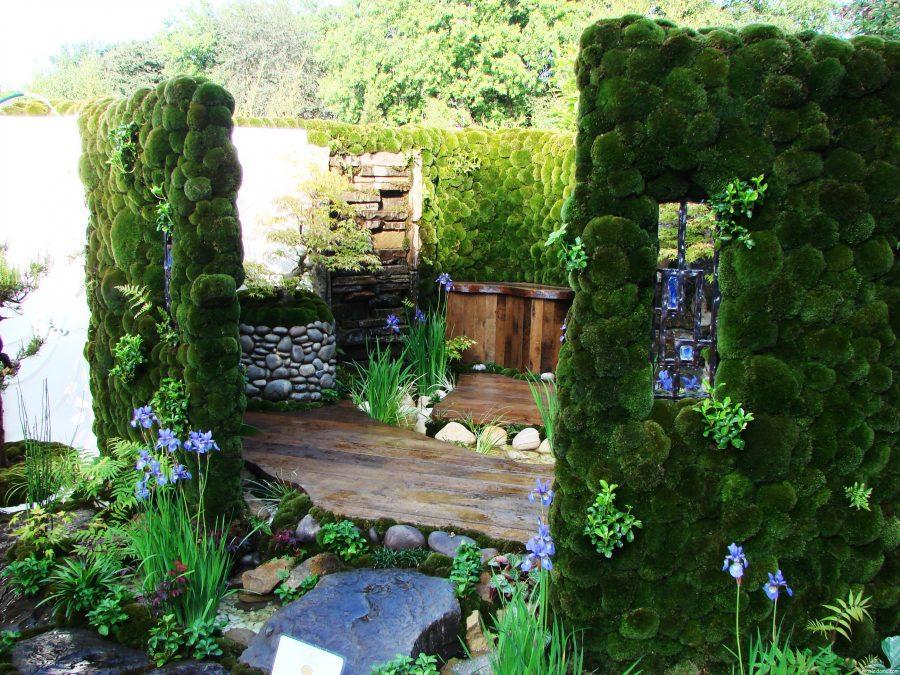 Как вертикальное озеленение может преобразить ваш дом?