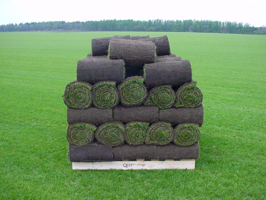 Как сформировать рулонный газон