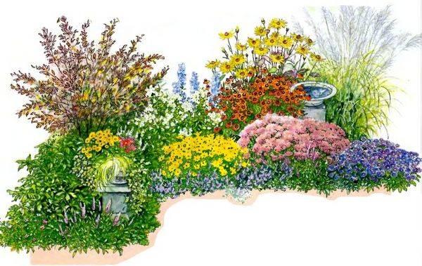 Цветник осенью