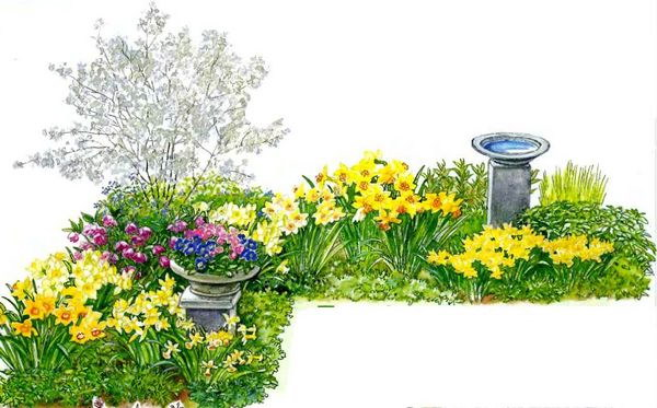Цветник весна