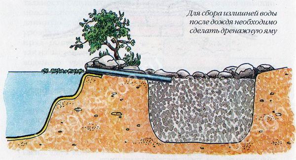Дренаж водоема