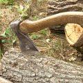 Сам себе плотник: как сделать топор и заточить его