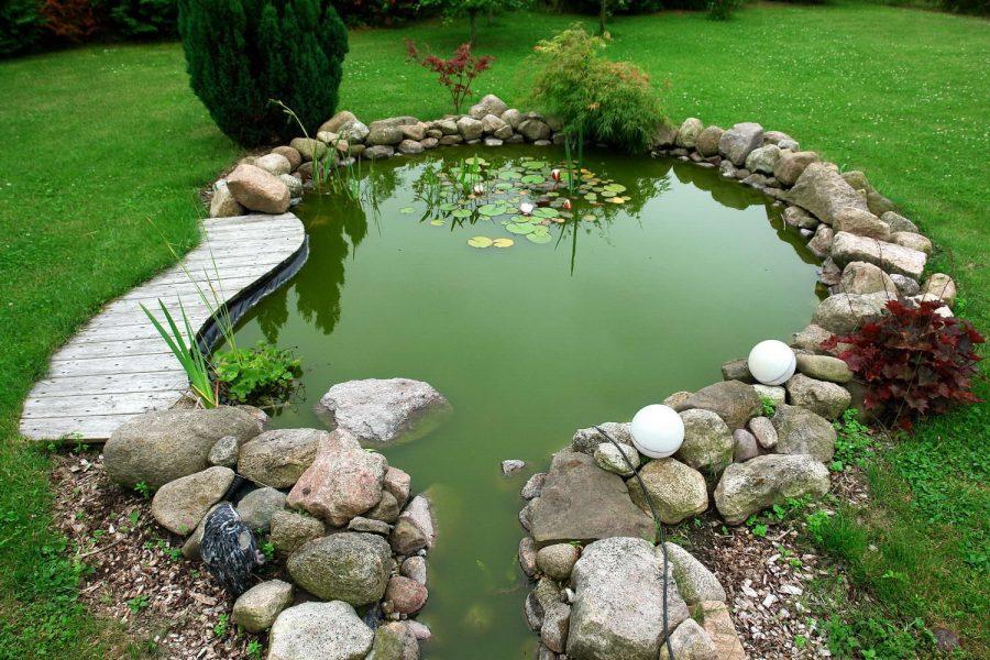 Декоративный пруд – достойное украшение вашей дачи