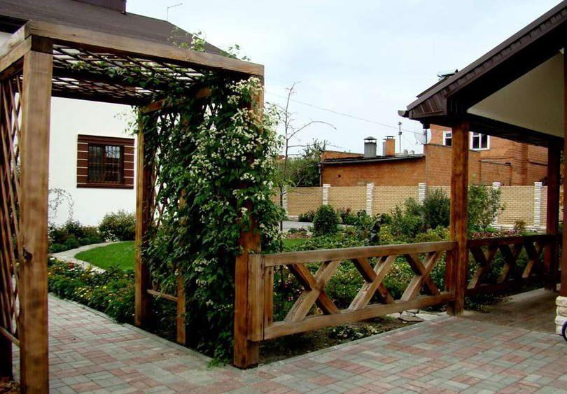 вертикальное озеленение дача