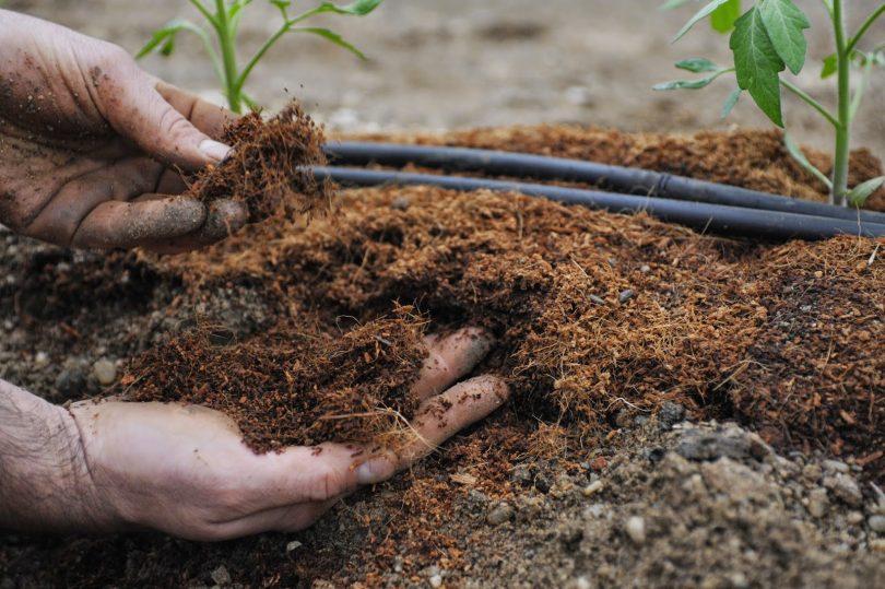 удобрения для глинистой почвы