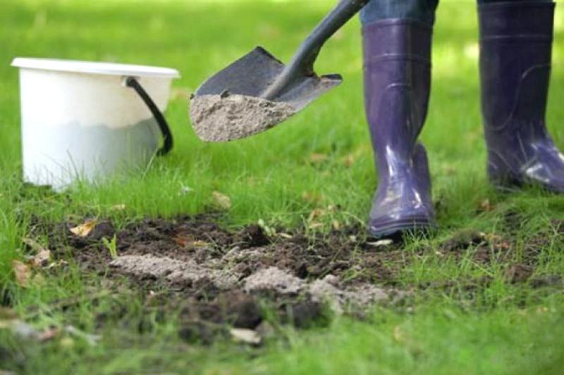 суглинистая почва как улучшить