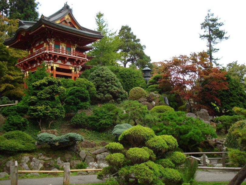 сады японии фото