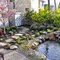 Украшаем пруд правильно: как выбрать и посадить растения