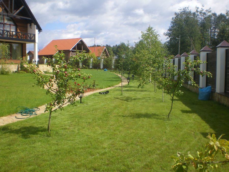 Как воплотить плодовый сад в ландшафтном дизайне дачи