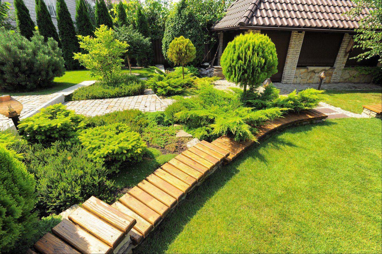 Озеленение земли