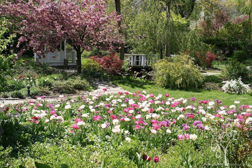 идеи садовый дизайн