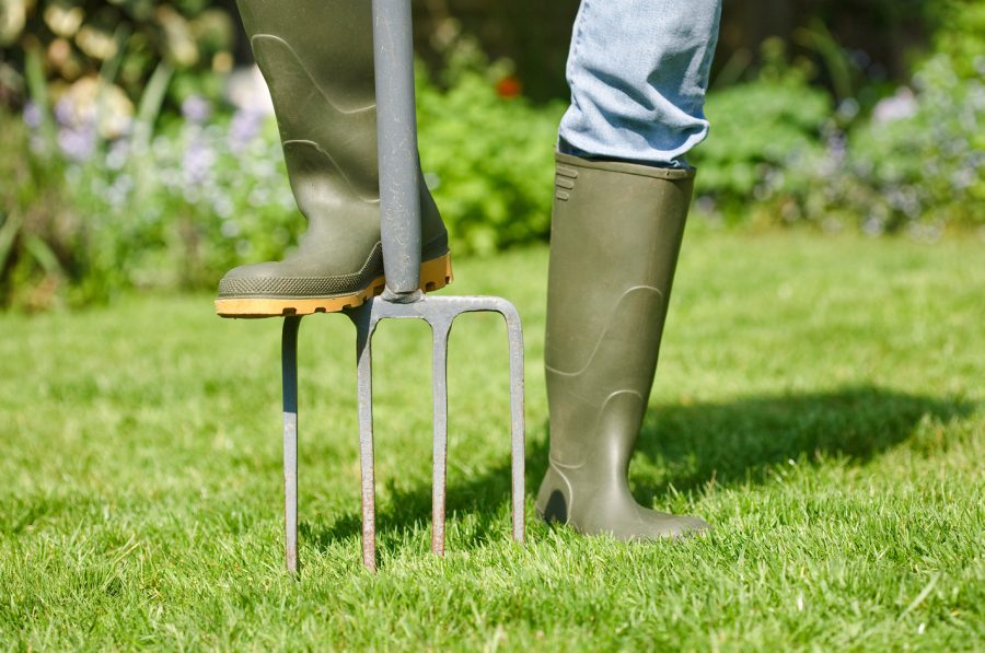 Аэрация газона (проветривание) — как правильно проводить