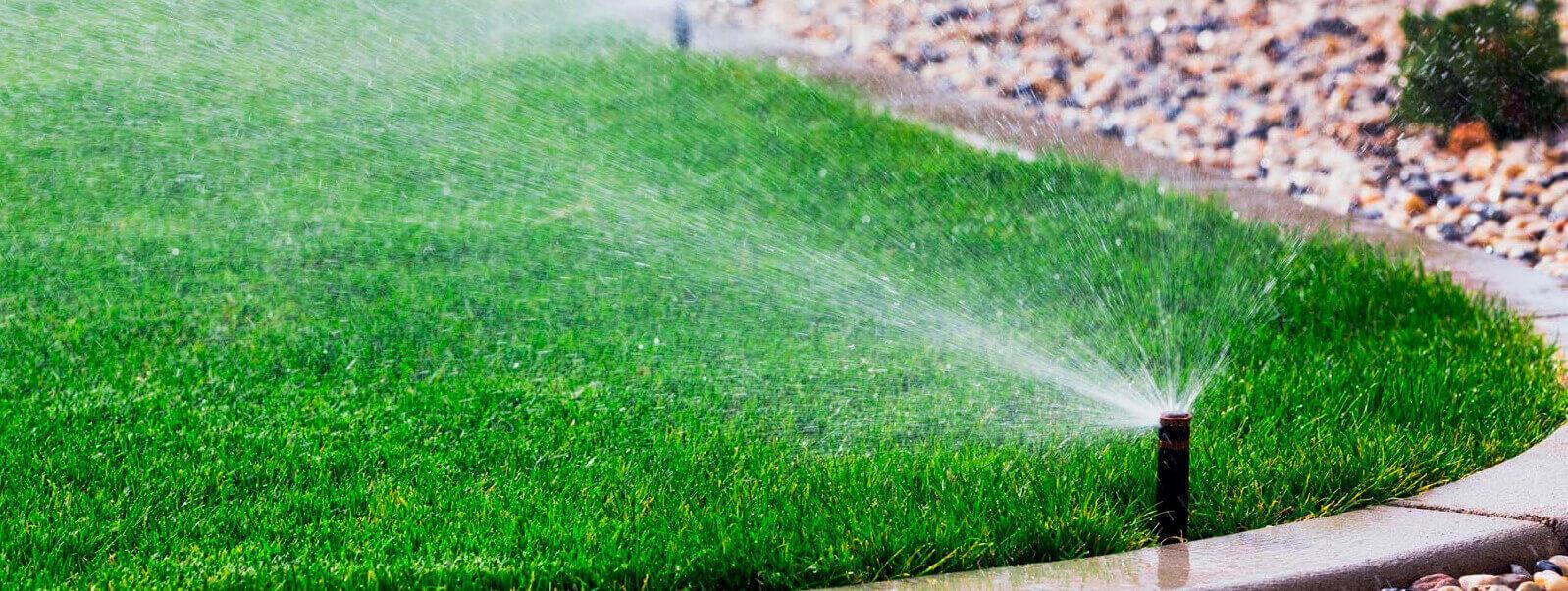 Полив газона своими руками фото 212