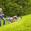 Стрижка газона своими руками: советы по первой и последующих стрижек