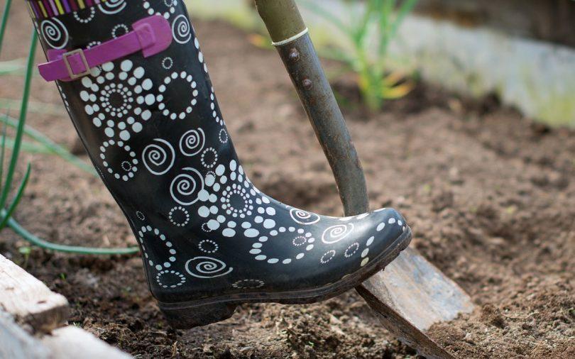 как подготовить землю под газон