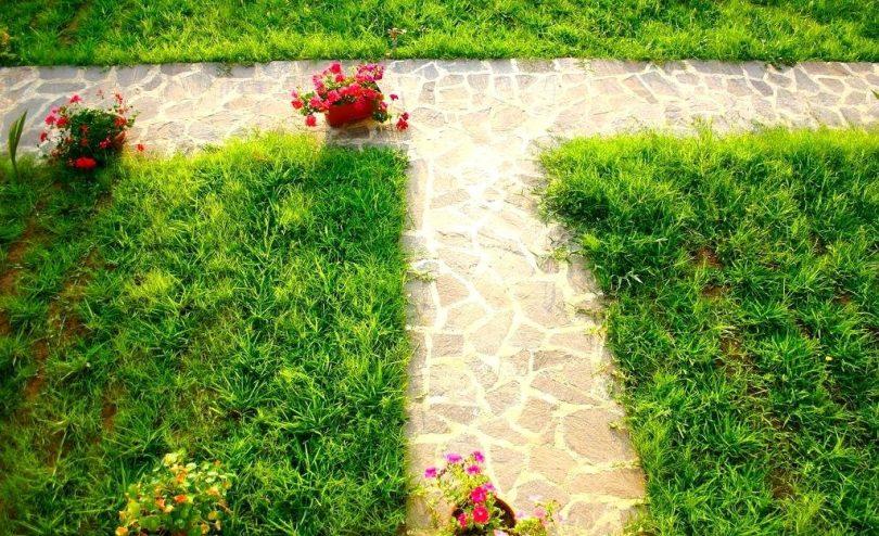 лилипут газон для ленивых