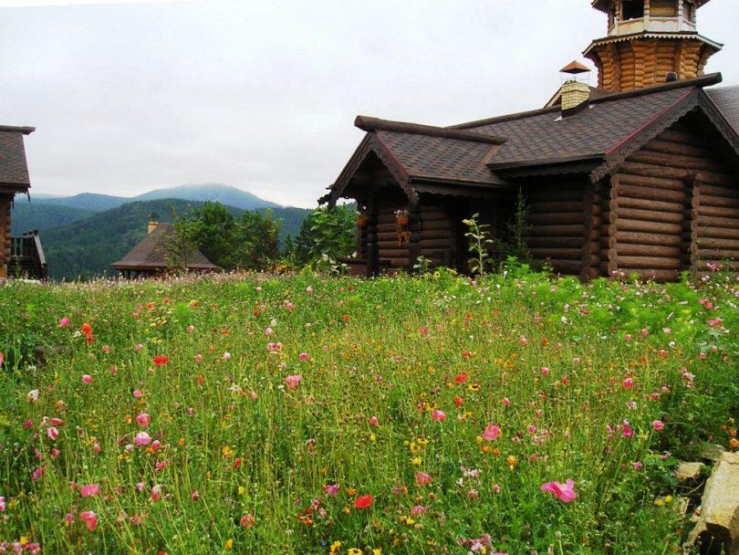 состав газон лилипут