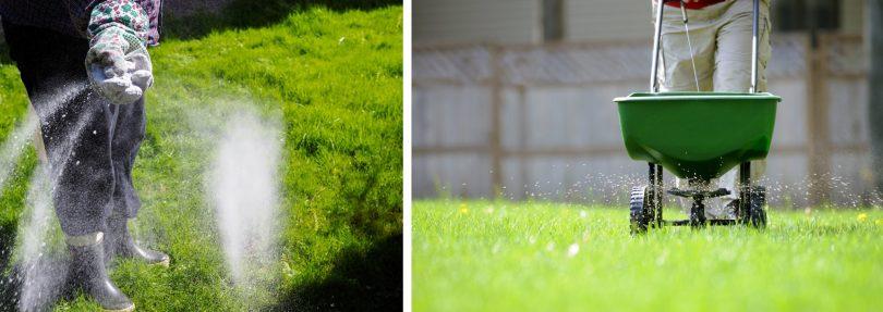 подкормка для газона