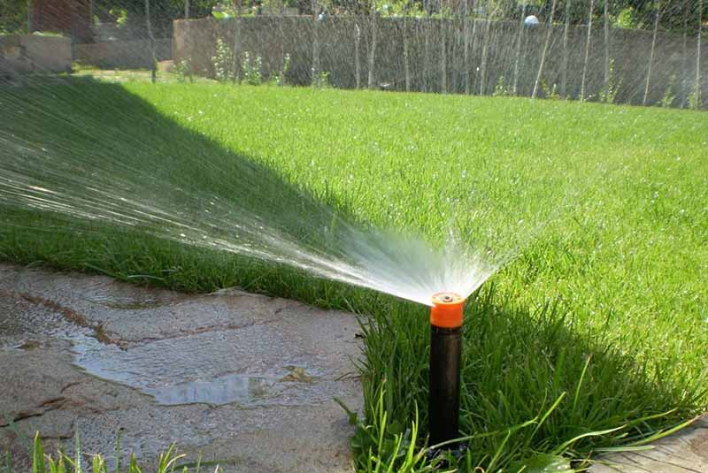 Водой с бассейна полить участок