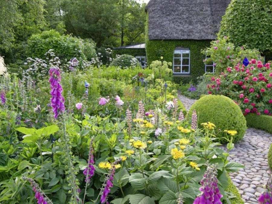 Украсьте ваш сад большим количеством растений