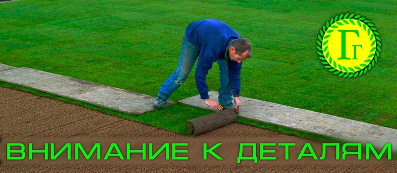 Подготовка почвы под газон и правильная посадка газона — базовые этапы обустройства территории