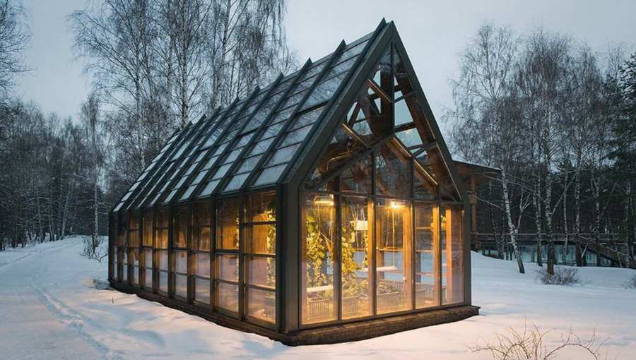 Организация зимней теплицы как бизнес-идея