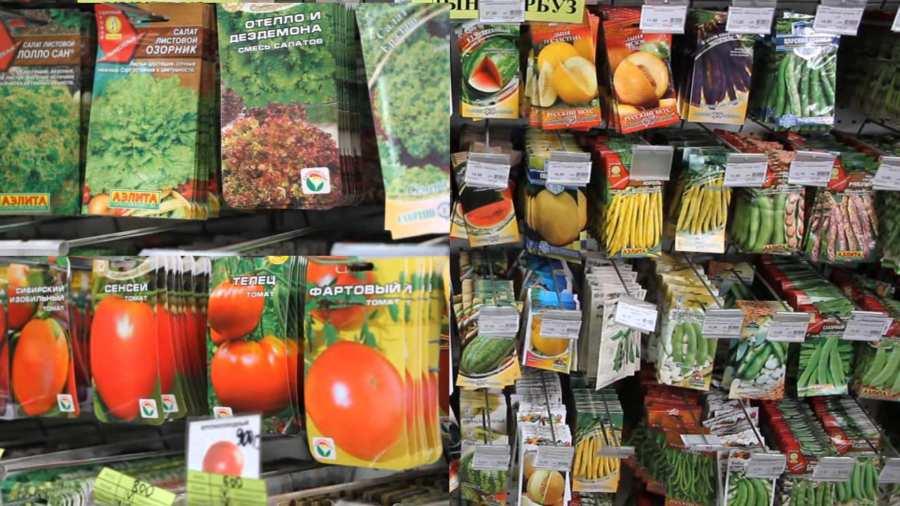 3 аргумента в пользу сотрудничества со специализированным магазином семян и продукции для растениеводства