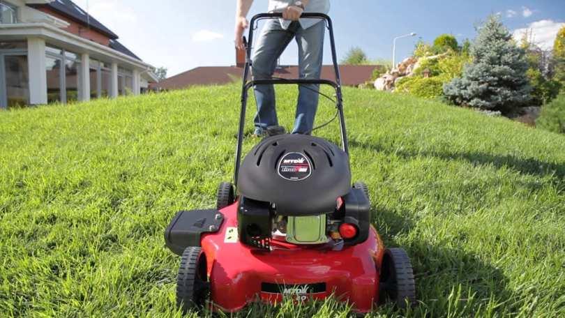 Основные принципы ухода за газоном, выбор газонокосилки для домашнего использования
