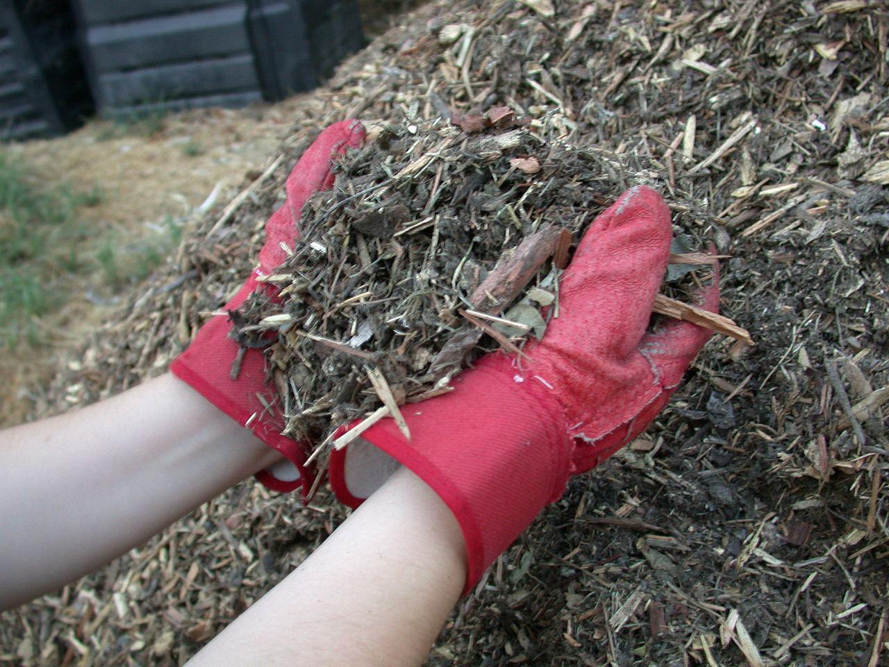 Мульчирование почвы как сделать