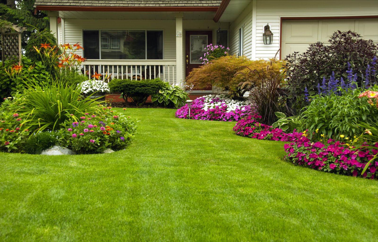 Как оформить дом газоном