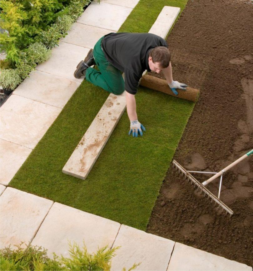 Как восстановить газон на даче своими руками